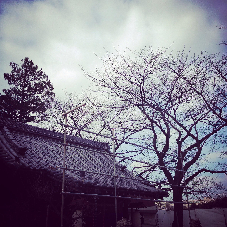 生田M邸_160107